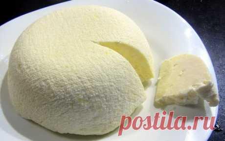 Хотите попробовать что-то новое? Готовим домашний сыр панир — Фактор Вкуса