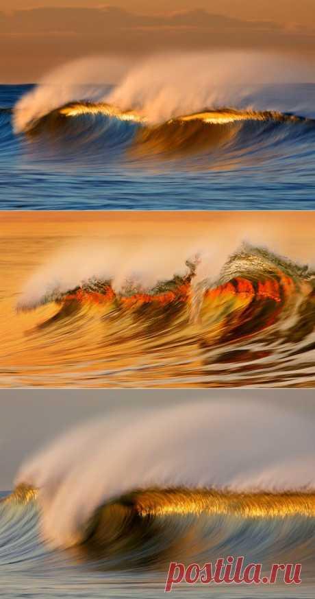 (+1) тема - Золотые волны Калифорнии (ФОТО) | САМЫЙ СОК!
