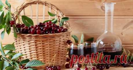 Как приготовить домашнее вино, настойку, наливку и ликер из вишни – 17 рецептов Вишня – отличное сырье для любительского домашнего виноделия в наших широтах. Она успешно растет практически на каждом приусадебном участке и проста в обработке, а вино из вишни получается ярким и насыщенным как по вкусу, так и по цвету и аромату.
