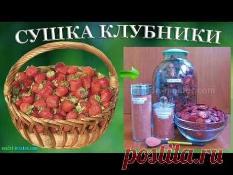 Сушеная клубника зимой – Клубника видео – Клубника полезные свойства