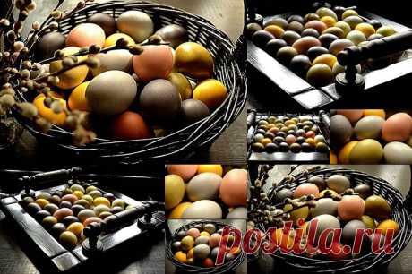 Жить и Готовить еду! - ...про натуральные красители для пасхальных яиц !!!