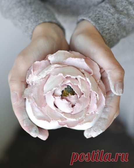 Добрый вечер! Челябинск, 27 октября буду у Вас  Приглашаю Вас на Мастер-класс по скульптурной живописи  ⠀ Столько раз рисовали Розы, поэтому предлагаю Вам нарисовать Пион из декоративной штукатурки! Показать полностью…