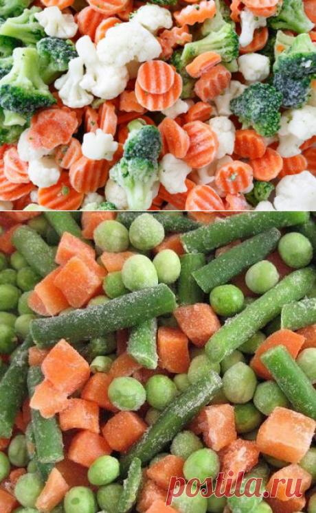 Как замораживать овощи? Заморозка овощей в домашних условиях :: SYL.ru