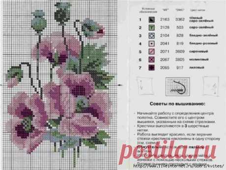 схемы вышивки крестом бесплатные маки: 10 тыс изображений найдено в Яндекс.Картинках