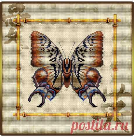 Бабочка в нейтральных коричневых цветах Бабочка в нейтральных коричневых цветахБабочка в нейтральных коричневых цветах обладает притягательной очаровательностью красоты.Творите и делайте мир прекраснее.