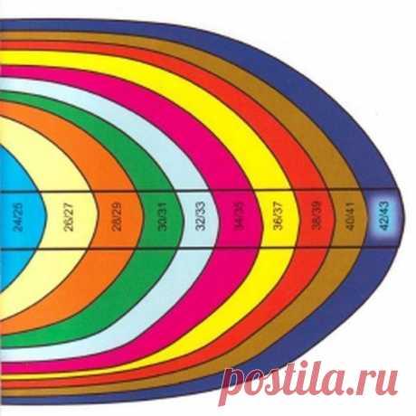 Общие правила вязания носков. Таблица размеров...