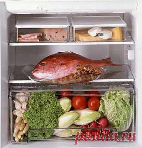 Белково – витаминная диета | ArChiz