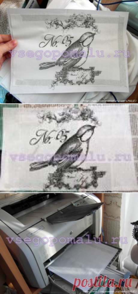 La copia impresa en la tela por medio de la impresora