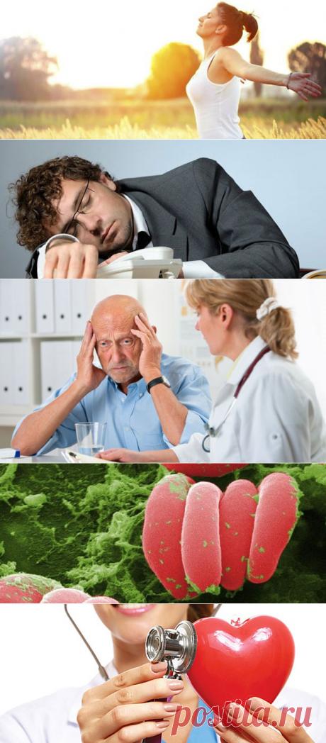 Низкий гемоглобин? 30 советов о том, как повысить гемоглобин в крови