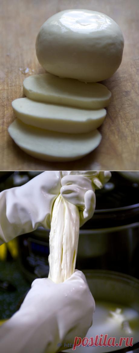 Моцарелла: традиционный рецепт | Здоровое меню на каждый день