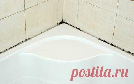 Эффективные методы борьбы с плесенью в ванной комнате
