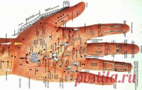 Conozcan las enfermedades por las manos