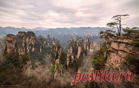 «Пролетая над затерянным миром». Национальный лесной парк Чжанцзяцзе, Китай. Автор фото – Евгений Самученко: