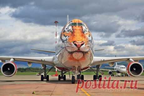 Фото SDM Boeing 747-200 ✈ FlightAware