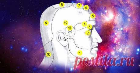 Хроническая головная боль в определенной части головы: вот все причины. Знания индийской медицины. Аюрведа — одно из направлений индийской медицины. Классическая медицина считает это ответвление альтернативным, но в определенных кругах оно пользуется большой популярностью.