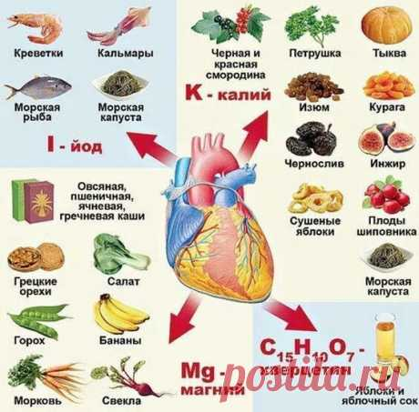 Сохраняем здоровье сердца