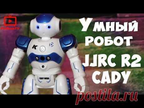 Умный робот на пульте управления JJRC R2 CADY. Вы только посмотрите сколько всего он умеет. Можно задать программу на 50 команд, понимает жесты. Подробный обзор радиоуправляемого робота игрушки.