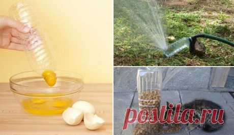 9 скрытых возможностей пластиковых бутылок, которые понравятся любой хозяйке