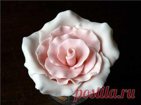 Съедобные розы из мастики / Рукоделие