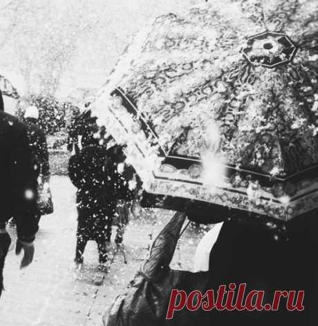Когда ложится первый снег…   Блог одной Леди - Любовь, Страсть, Дружба, Жизнь