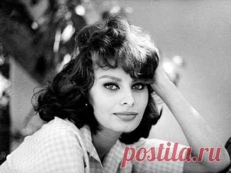 """༺🌸༻ЖЕНЩИНА И КРАСОТА.  Софи Лорен. """"Женщина и красота"""".    """"Ничто не делает женщину более красивой, чем вера в то, что она красива"""".  Эта знаменитая фраза принадлежит Софи Лорен.    Софи́ Лоре́н (Sophia Loren; настоящее имя - Софи́я Вилла́ни Шиколо́не, итал. Sofia Villani Scicolone; род. 20 сентября 1934, Рим) - итальянская актриса и певица. Обладательница почётных премий всех основных кинофестивалей - Каннского (1961), Венецианского (1958, 1998), Московского (1965, 1997), Бе..."""