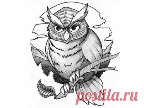 Tattoo design - Owl by Oliver Müller on Dribbble