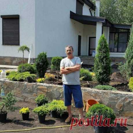 Пейзажный сад из хвойных – ландшафтная переделка для жизни и отдыха | Идеи дизайна (Огород.ru)