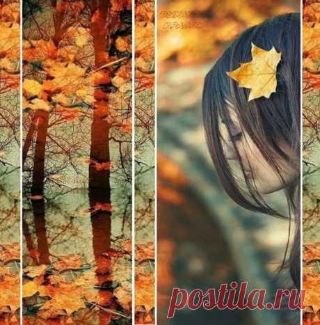 А может быть, нас осень учит: Всё, что прошло - то отпустить. Всё, что тревожит и что мучит, Как листья сбросить и забыть?