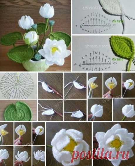 Кувшинки крючком  описание цветов крючком https://woman7.ru/rukol/vasanii-cveti.html