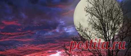Суперлуние 19 февраля 2019 года: точное время, что нужно делать Суперлуние 19 февраля 2019 года: точное время, что нужно делать и как влияет суперлуние на человека. Денежные обряды и ритуалы на полную луну.