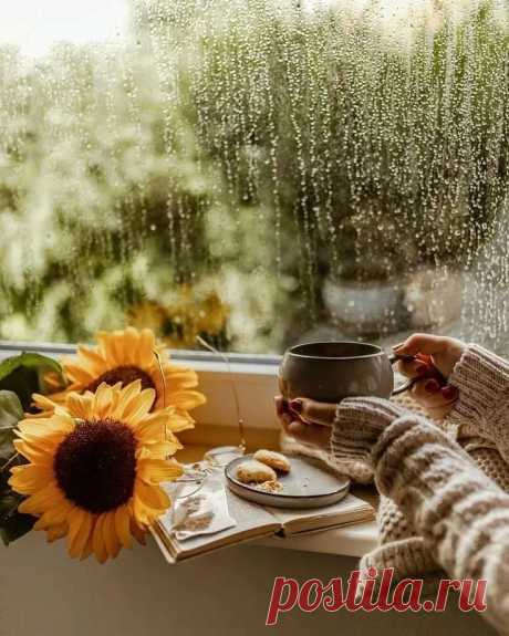 Люблю мечтать под шум дождя, смотреть на капли на стекле. Люблю побыть внутри себя... Чтоб чашка кофе на столе...