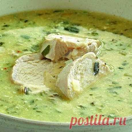 Georgian chicken soup of a chikhirtm: there is a wish to prepare on the first every day! The delightful recipe - Mirtesen