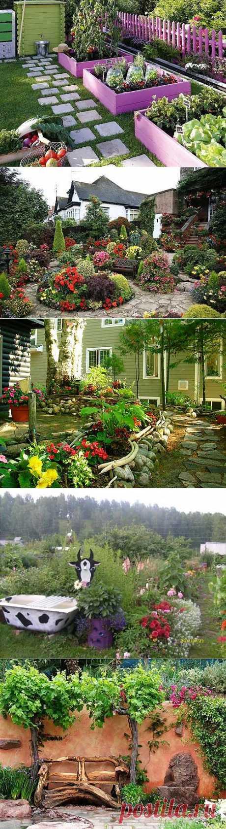 Пересаживать комнатные цветы осенью