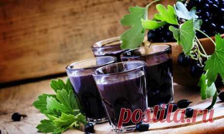 Компот из черной смородины в мультиварке - Пошаговый рецепт с фото своими руками. Мультиварю
