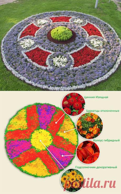 Круглые клумбы: особенности обустройства и оформления красивых цветников на даче