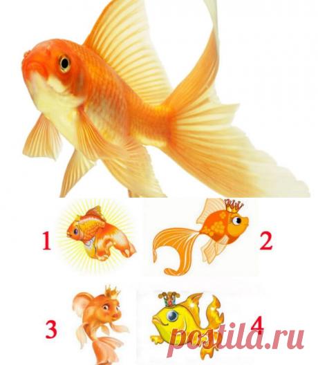 Тест: когда золотая рыбка исполнит вашу мечту — Бабушкины секреты