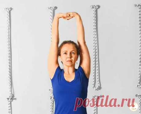 Узнав, какие проблемы со здоровьем может решить обычное поднятие рук вверх, я стал выполнять упражнение каждый день | Домашний спортсмен | Яндекс Дзен