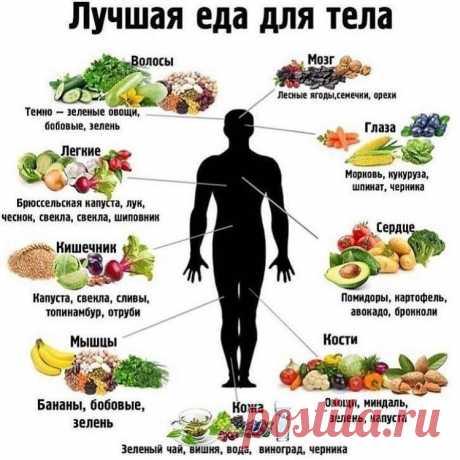 Шпаргалочка для тех, кто следит за своим здоровьем