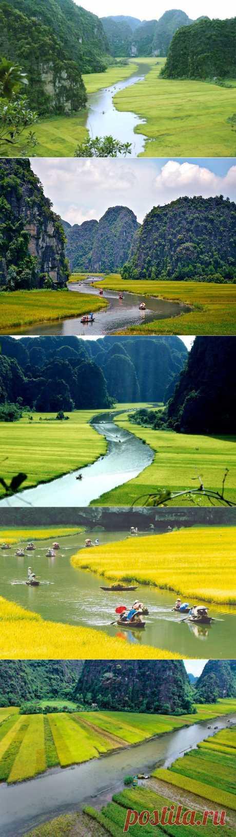 Горы и рисовые поля Там Кок :  НОВОСТИ В ФОТОГРАФИЯХ