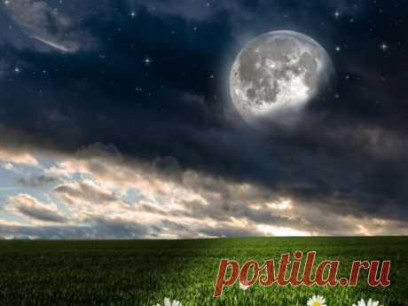 Фазы Луны вавгусте 2020года: когда Полнолуние, Новолуние, убывающая ирастущая Луна Лунный календарь поможет понять, чего можно ждать отЛуны вавгусте. Астрологи отмечают, что впоследний месяц лета Луне будет чем нас приятно удивить. Следуйте рекомендациям экспертов, чтобы быть успешными иудачливыми.