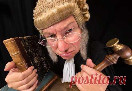 7 самых странных законов мира | закон и порядок | Яндекс Дзен