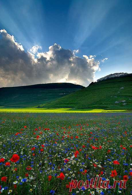 Godlight. Castelluccio di Norcia, Umbria, Italy. | Pinterest: the tool for search and storage of interesting ideas