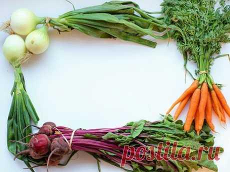 Очень вкусные салаты из свеклы - 6 быстрых вариантов | О вкусной жизни | Яндекс Дзен