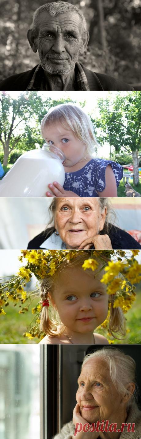 Новости России: русские своих бабушек не бросают!