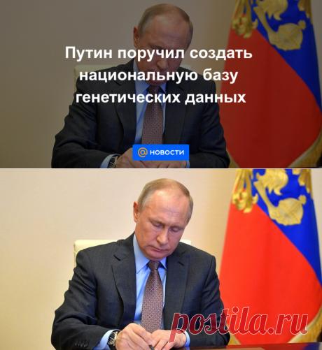 Путин поручил создать национальную базу генетических данных - Новости Mail.ru