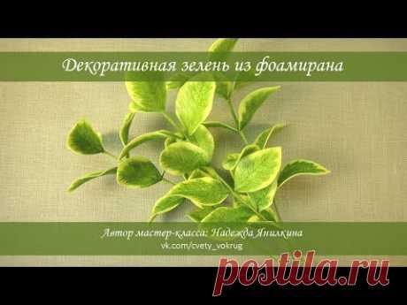 Декоративная зелень из фоамирана мастер-класс / Decorative greens | foam flowers | DIY