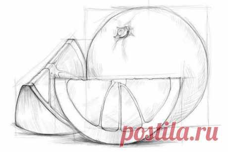 Картинки для срисовки карандашом (38 фото) ⭐ Забавник