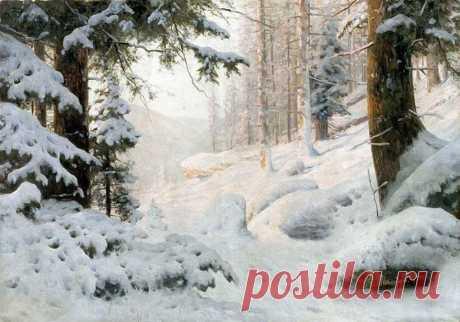 Зима для того и создана в белых тонах, что бы начинать свою жизнь с белого листа ❄ Снежный зимний лес.