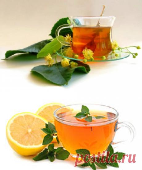 Рецепты противопростудных чаев