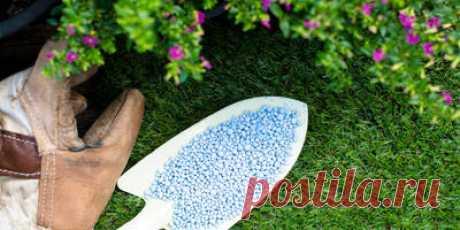 Минеральные удобрения для дачи - посадка и выращивание растений